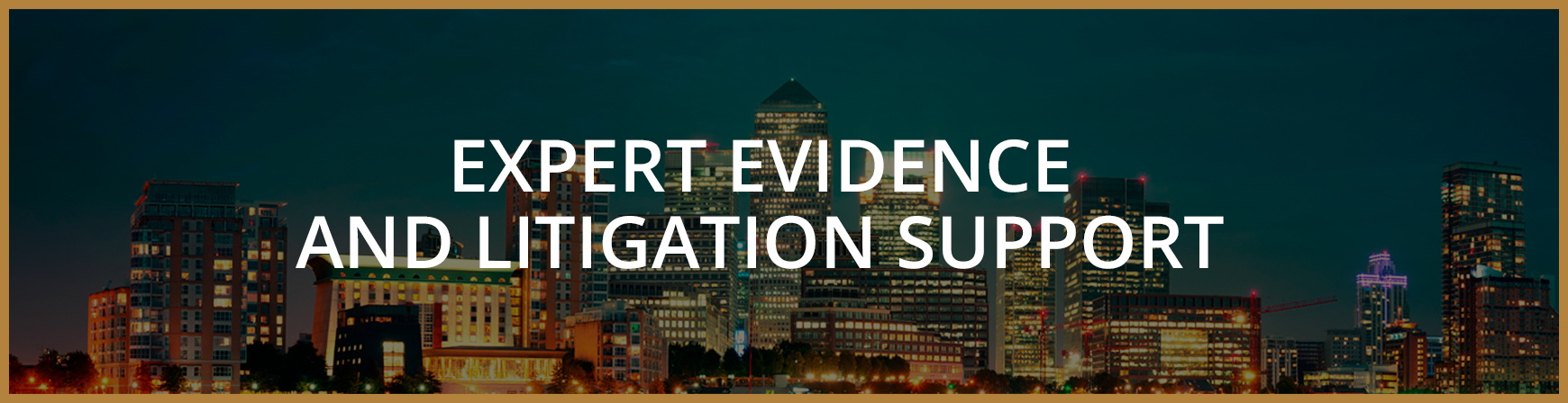 Expert Evidence and Litigation Support